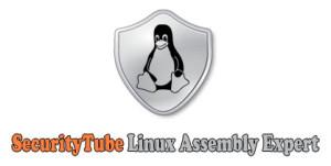 SLAE_logo2